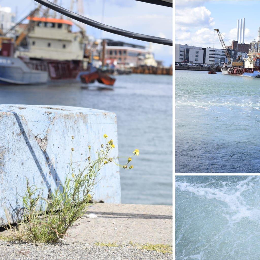 Oprensning af sediment i Kronløbsbassinet, hvor Kronløbsøen skal bygges. Et særligt boblegardin sikrer, at  sedimentet bliver, hvor det skal være, når skibet arbejder og sejler ind og ud af bassinet.