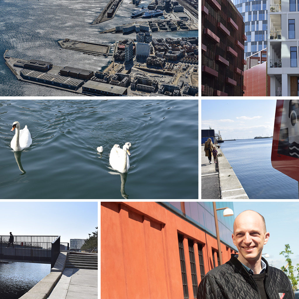 Rune Boserup, COBE på tur i Nordhavn ved Kronløbsbassinet