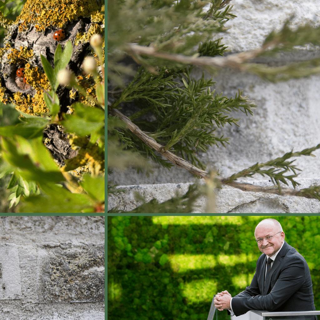 Kronløbsøen - collage med Torben Möger Pedersen, adm. direktør i PensionDanmark og murstenen Kronø samt grønne byrum.